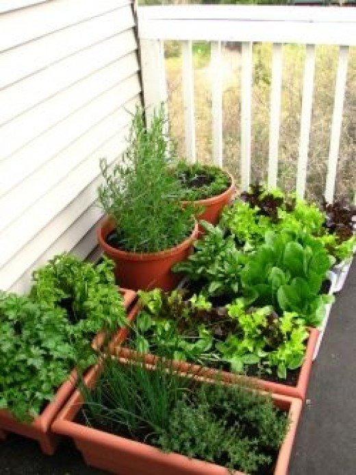 A billet mom talks about what a garden means to her for Definition for balcony